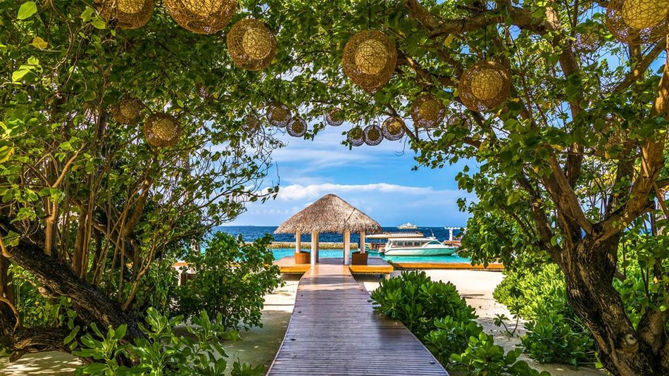 5 Amaya Resorts Amp Spa Kuda Rah Maldives Affordable